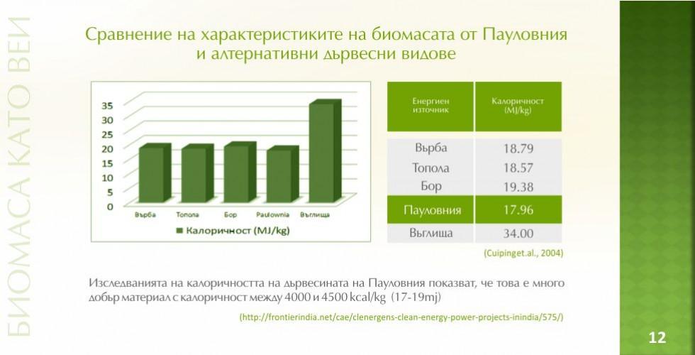 Пауловния – зеленото енергийно бъдеще - стр.12