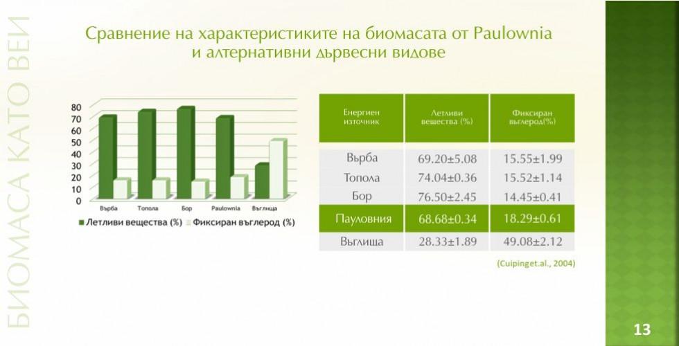 Пауловния – зеленото енергийно бъдеще - стр.13