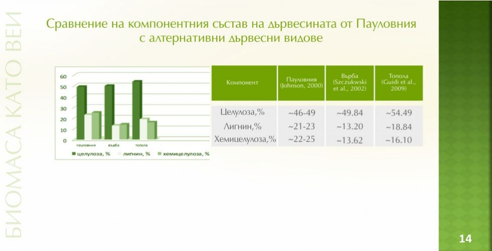 Пауловния – зеленото енергийно бъдеще - стр.14