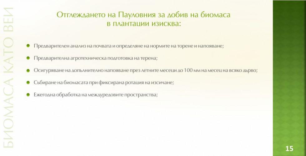 Пауловния – зеленото енергийно бъдеще - стр.15