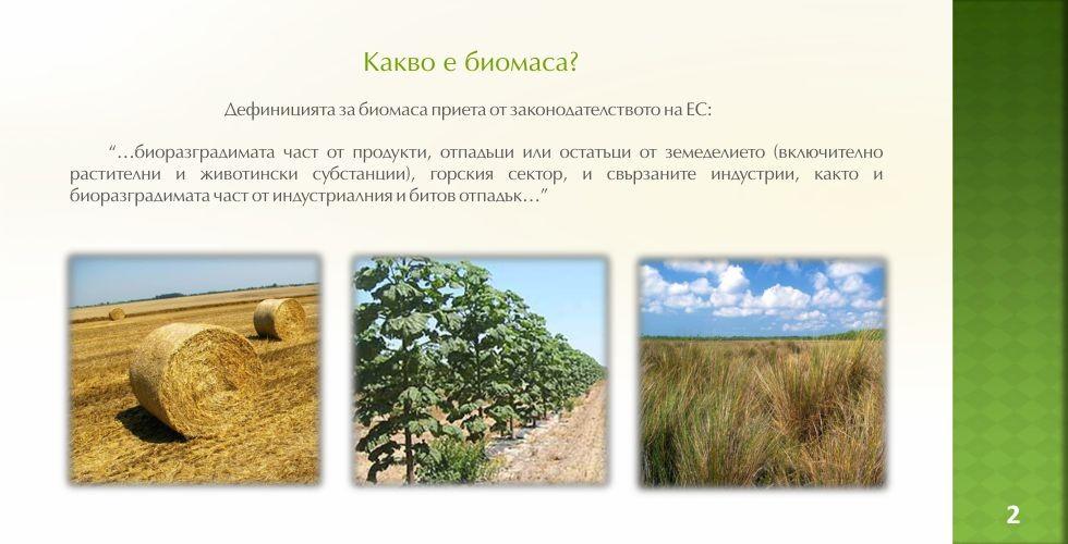 Пауловния – зеленото енергийно бъдеще - стр.2