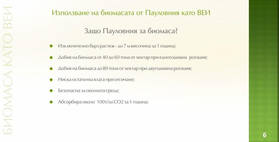 Пауловния – зеленото енергийно бъдеще - стр.6