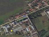 biotree location