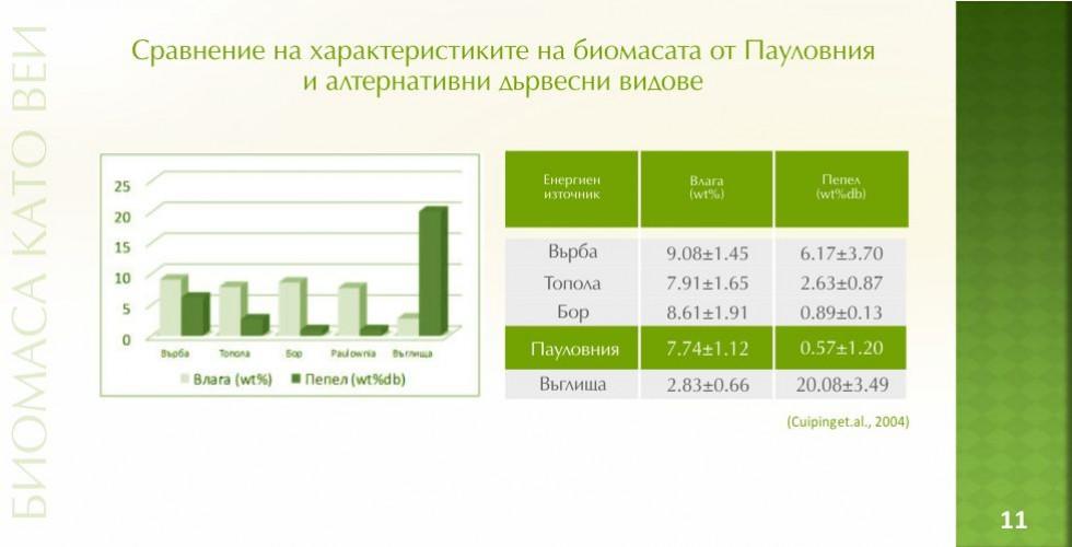 Пауловния – зеленото енергийно бъдеще - стр.11