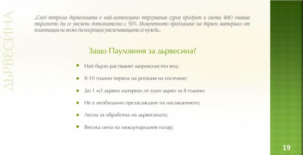 Пауловния – зеленото енергийно бъдеще - стр.19