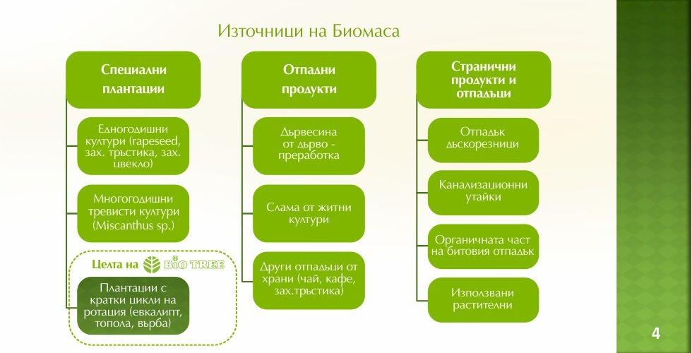 Пауловния – зеленото енергийно бъдеще - стр.4