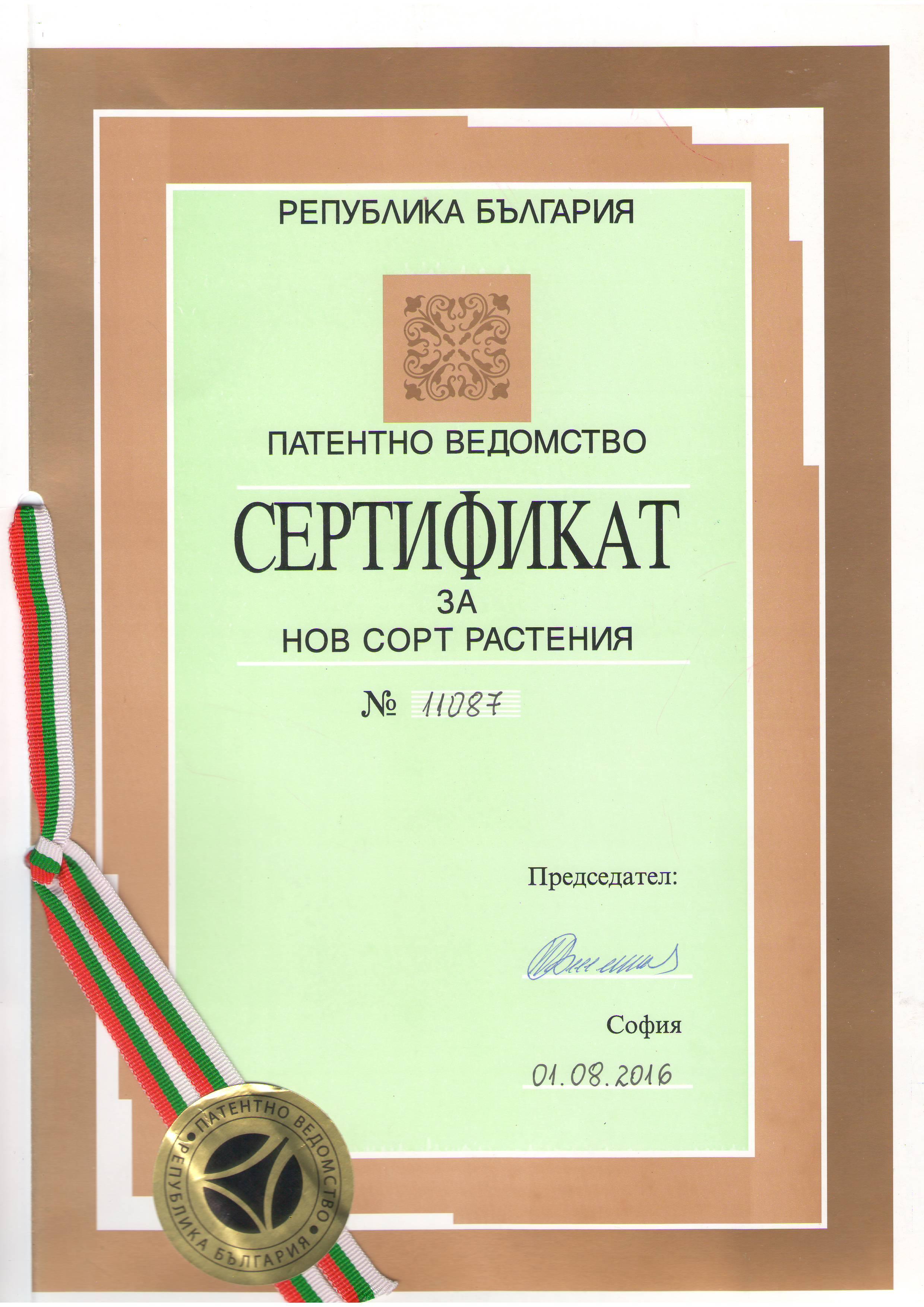 Сертификат за нов сорт пауловния - BELLISSIA