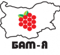 БАМ-Я